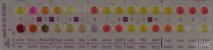 rapid ID 32 STREP - Набор для идентификации стрептококков за 4 часа