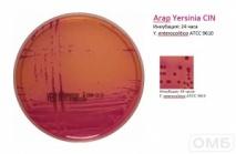 Yersinia CIN Agar - Агар для селективного выделения Yersinia