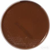 Chocolate agar+PolyViteX VCAT 3 - Шоколадный агар со смесью факторов роста PolyViteX и смесью VCAT 3 для селективного выделения Neisseria gonorrhoeae и Neisseria meningitidis