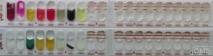 api 20 NE - Набор для идентификации неприхотливых грамотрицательных аэробных/микроаэрофильных палочек